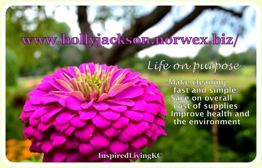 Norwex life on purpose